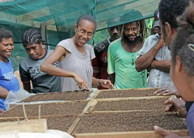 Students learning how to sow seeds - agribusiness