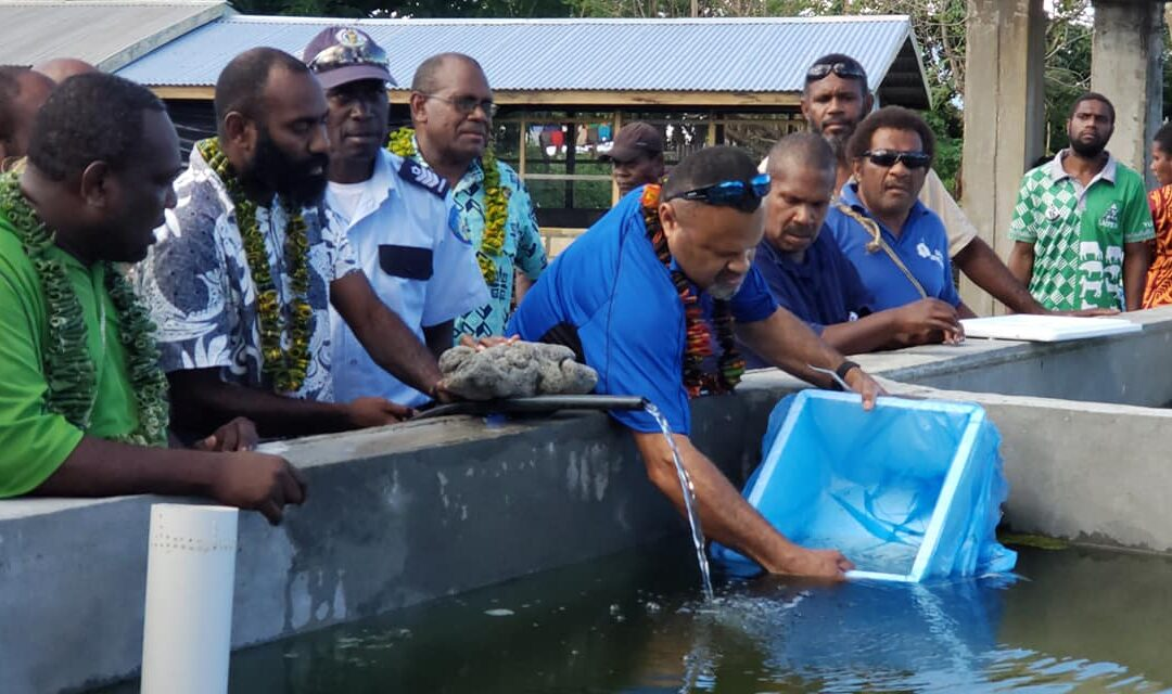 300 tilapia 'fingerlings' Released