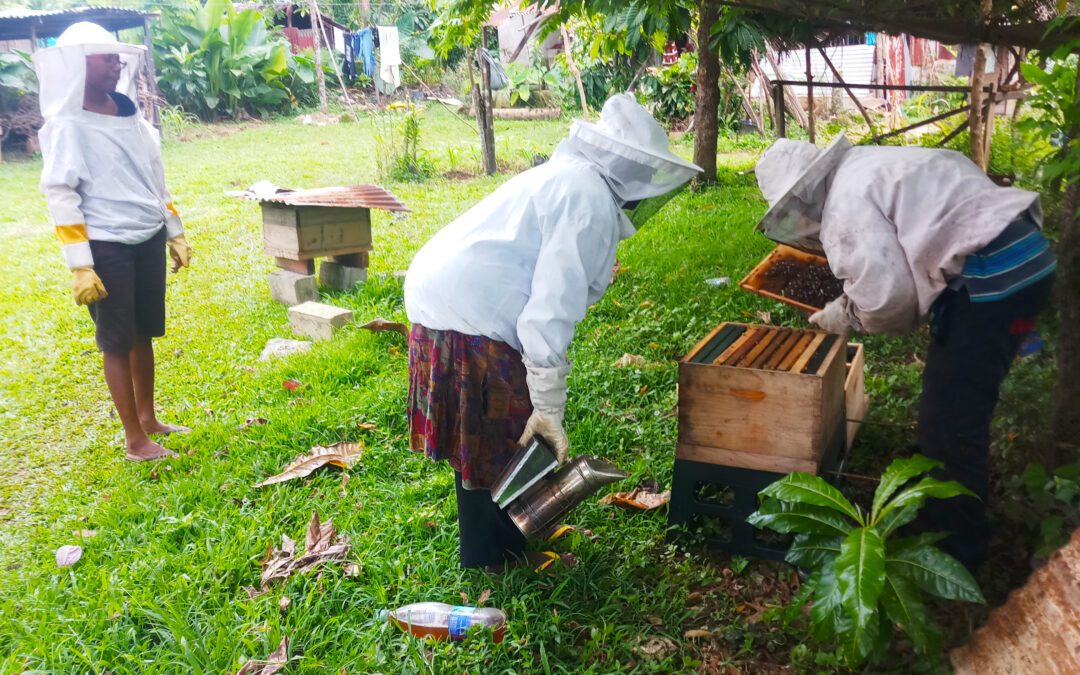 Training For SANMA Beekeepers