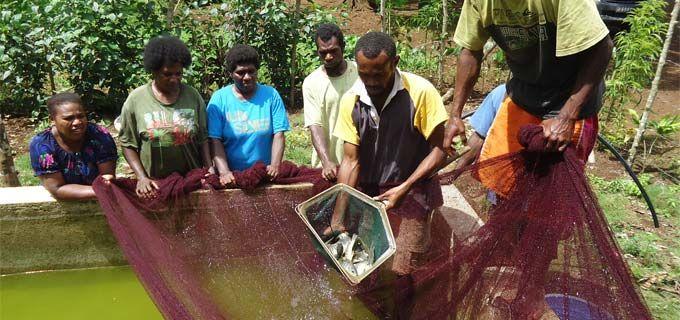 Improving fishing production levels